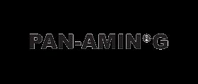 PAN-AMIN G